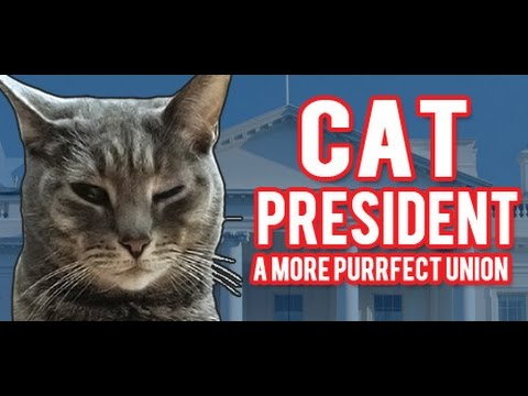 CAT PRESIDENT A More Purrfect Union - With MaximumPower
