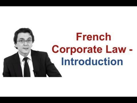 French Corporate Law / Introduction - Cabinet Bensussan Berenthal & Associés