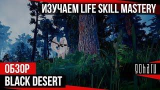 Black Desert - Изучаем Life Skill Mastery и готовимся к Дригану