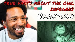 True Facts about the Owl REACTION - DaVinci REACTS
