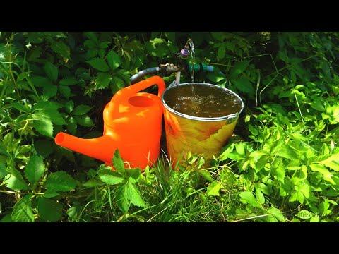 Скважина на своем участке: почему нельзя давать воду соседям и что грозит за глубину более 5 метров