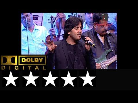 Wadiyan Mera Daman Raste Meri Bahe song by Javed Ali Live Music Show - Hemantkumar Musical Group