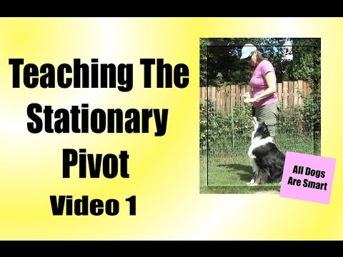Teaching The Stationary Pivot For Rally-O - Video 1
