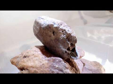 STONE MYSTERY Archeology Gallery