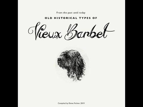 Vieux Barbet: Chien d'eau français et retriever