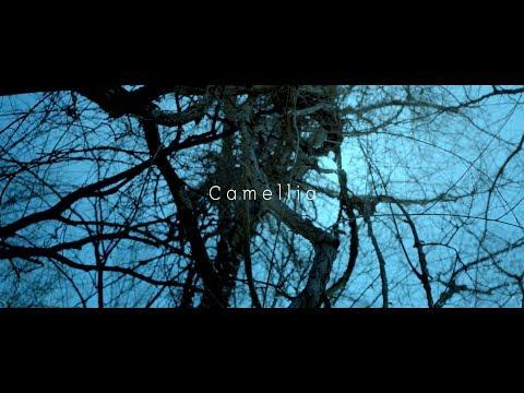 건탁(GUNTAC) - 동백 (Camellia) [MV]