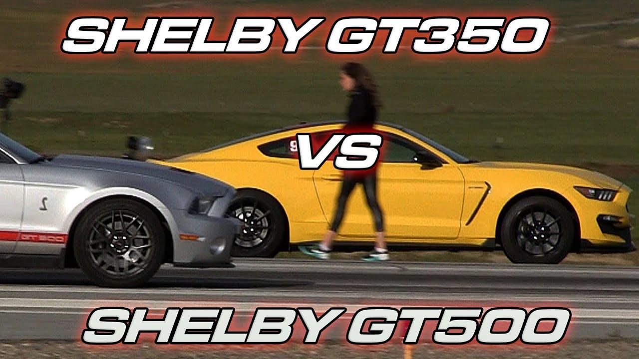 Shelby Gt350 Vs Shelby Gt500 Doovi
