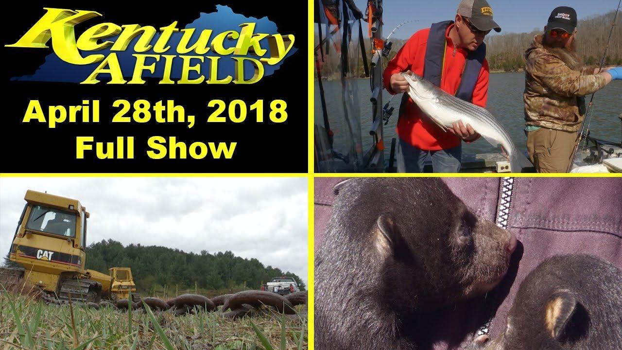 Bear Stripers april 28th, 2018 full show - cumberland stripers, brush chaining, bear den