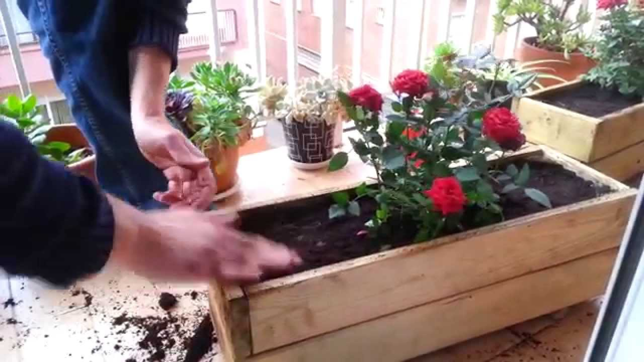 Plantar rosales en jardineras de madera youtube for Jardineras con palets de madera
