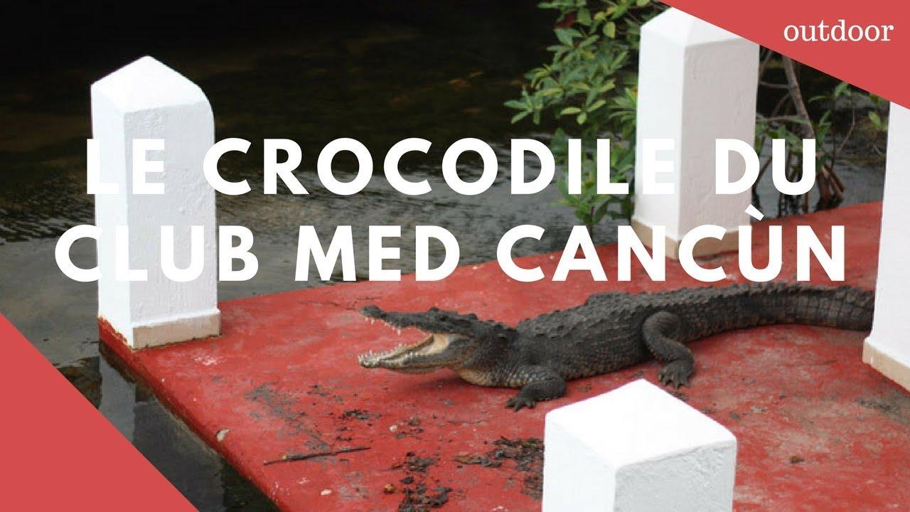 crocodile club med canc n youtube. Black Bedroom Furniture Sets. Home Design Ideas