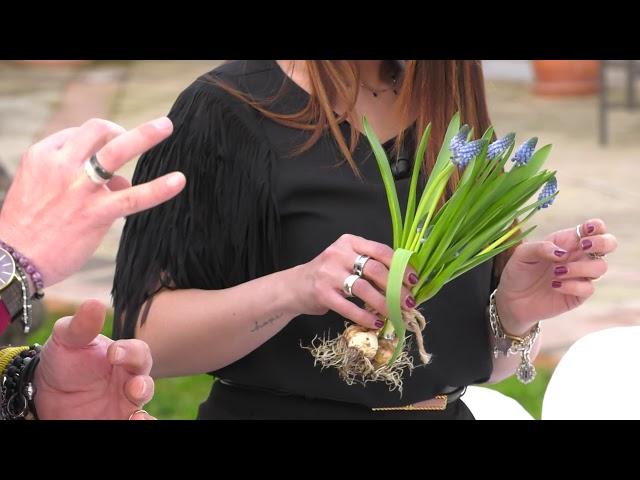 Flowers Mood - Ventiduesima puntata