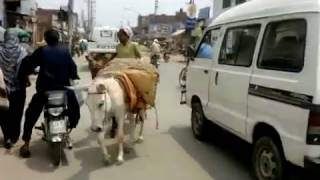 Bedian road To Bhatta Chowk Lahore