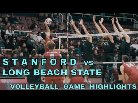 Stanford vs Long Beach State Men's Volleyball Highlights (1/