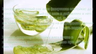 видео Алоэ и мед при бронхите: рецепты и применение