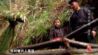 [中华优秀传统文化]独特的侗寨语言| CCTV中文国际