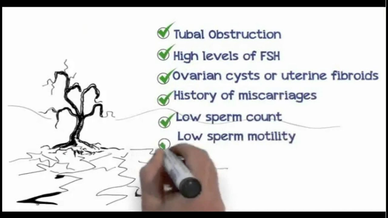Natural Ways To Get Pregnant Fast