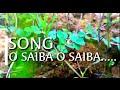O SAIBA..SONG KEYBOARD COVER BY II MUSICIAN HANAK  DX