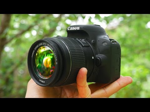 BEST Beginner DSLR Camera 2018!