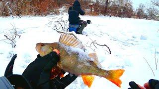Безмотылка в корягах на малой реке Поставили жерлицы и разбурили коряжник Трудовая зимняя рыбалка