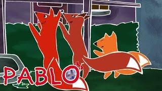 Pablo - Pumpkin measures up S01E30 HD | Cartoon for kids