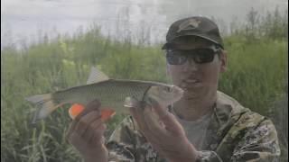 Рыбалка 2020 Поймать голавля на малой реке