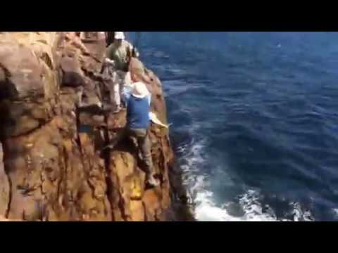 yellowtail fishing at Cape Point (10kg)