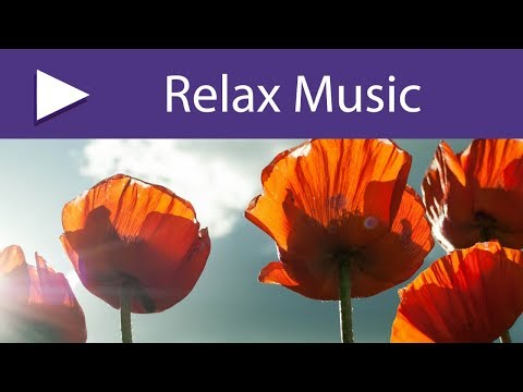 Stressless | Music for Balacing Body & Mind, Everlasting Natural Treatment for Stress Relief
