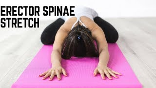 Erector Spinae Stretches for Effective Lower Back Pain Relief