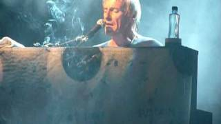Trees - Paul Weller