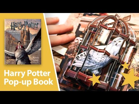 Harry Potter: A Pop-Up Book - Amazing 3D pop-ups.