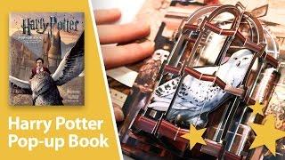Harry Potter: A Pop-Up Book - Amazing 3D pop-ups.