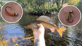 Тест Новых Мушек Длина Поводка Решает Чистейшая Река Богатая Крупными Хариусами