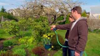 Garden Watering Tips from Canadian Tire