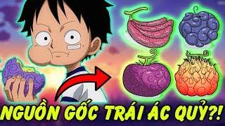 Nguồn Gốc Trái Ác Quỷ Trong One Piece – Cách tạo ra những trái ác quỷ?!