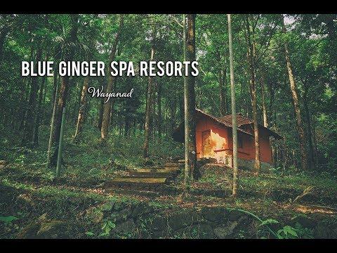 Blue Ginger Spa Resorts  Wayanad   Holiday Spot   HD