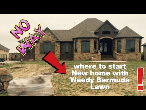 Just bought a new home with a weedy Bermuda Lawn?