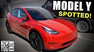 tesla Time News - Model Y Spotted!