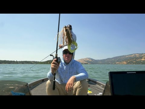 Jig Fishing - Everything You Need To Know | Full Seminar