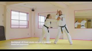 Hoshinsul #8 Front choke escape & counter (For Quiet Flame Taekwondo Brown Belt)