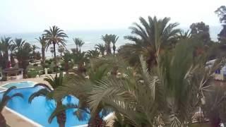 Впечатления об отеле Palm Beach Club Hammamed 4 Тунис май 2016