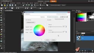 PaintShop Pro x4. Урок 4. Сногсшибательные черно-белые фото