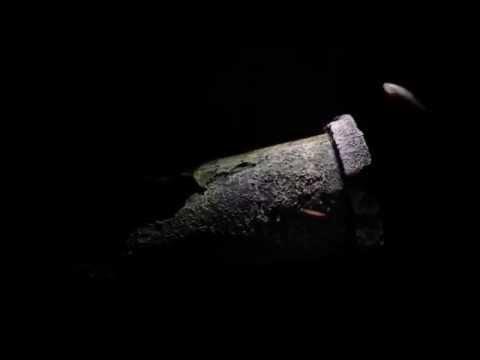 Blind Cave Tetra Tank