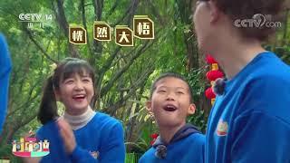 [2020过年啦]鞠萍姐姐化身挑担夫| CCTV少儿