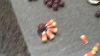 Candy Turkey Demo Ckc.avi