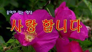 사랑합니다/ 꽃이 있는 영상