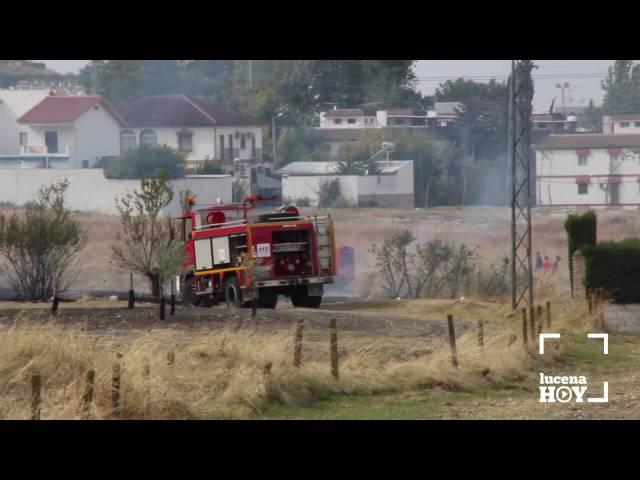 Vídeo: Incendio de una zona de pastos en la carretera de Rute