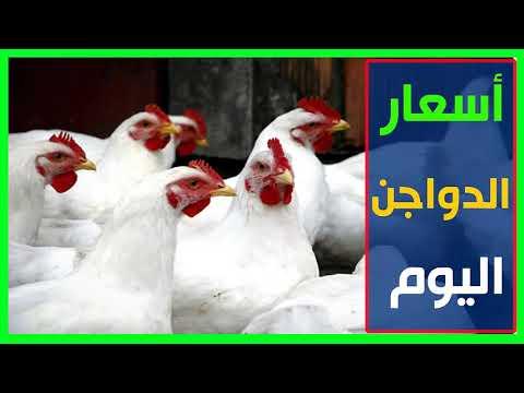 اسعار الدواجن اليوم الجمعة 20-10-2017 في مصر