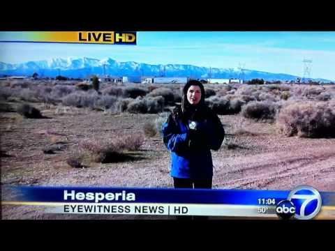 ABC News Reporter Fail