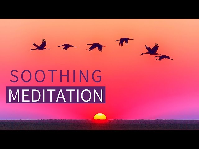 Guided Meditation for Calming ANXIETY - Meditation for Calming the Mind