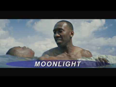 "Quick Pic: ""Moonlight"" 